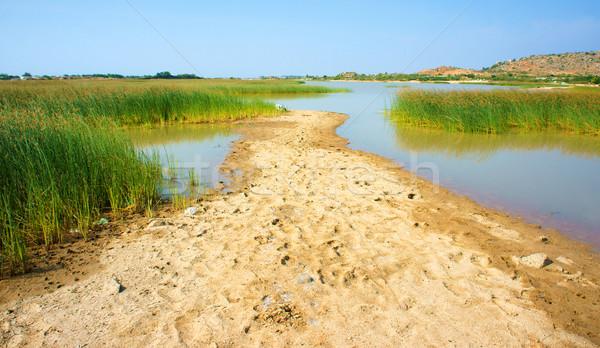 Belle paysage Viêt-Nam campagne ciel jour Photo stock © xuanhuongho
