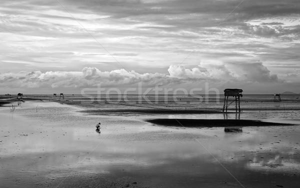Soyut sahne Vietnam plaj yalnız adam Stok fotoğraf © xuanhuongho
