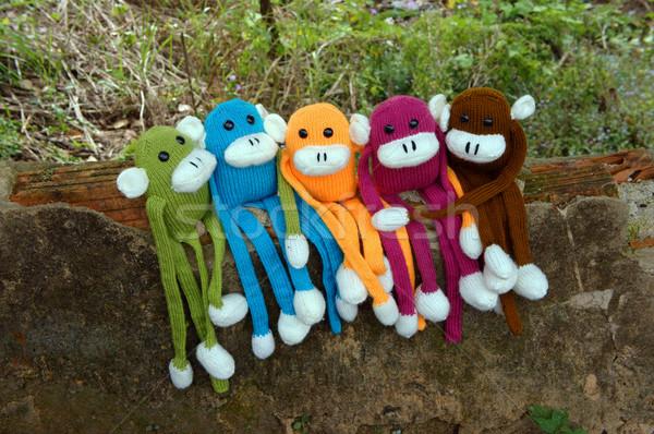 Gebreid aap symbool jaar apen verbazingwekkend Stockfoto © xuanhuongho