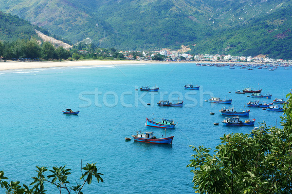 Vietnam landscape, beach, mountain, ecology, travel Stock photo © xuanhuongho