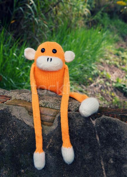 Tricotado solitário macaco símbolo ano 2016 Foto stock © xuanhuongho