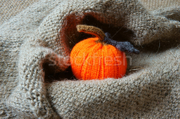 Halloween background, handmade, pumpkin, spider, october Stock photo © xuanhuongho