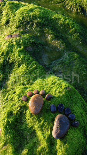 Pé alga arte beira-mar casal Foto stock © xuanhuongho