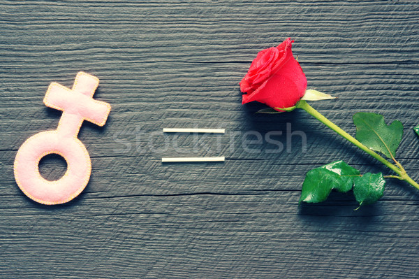 Feminine symbol, women,  red rose Stock photo © xuanhuongho