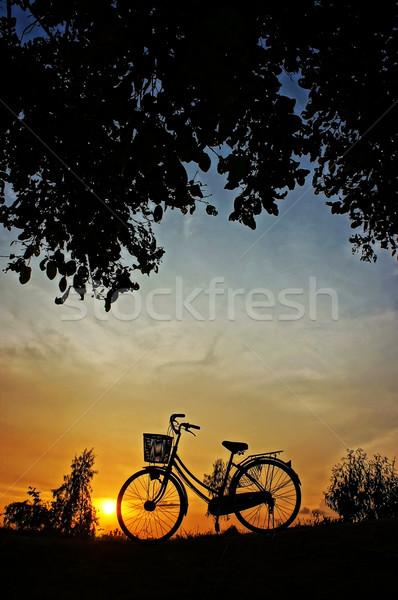 Bicicleta pôr do sol belo paisagem natureza impressão Foto stock © xuanhuongho