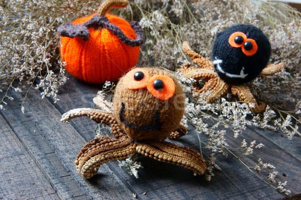 Halloween el yapımı kabak örümcek komik örgü Stok fotoğraf © xuanhuongho