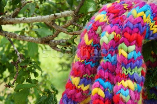 Kleurrijk sjaal handgemaakt geschenk groene boom winter Stockfoto © xuanhuongho