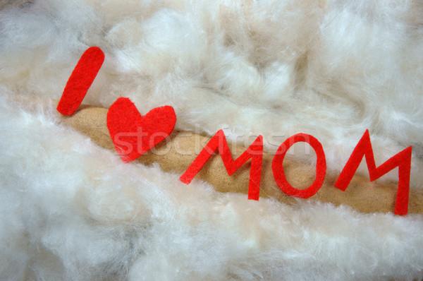 Liefde moeder bericht idee kleurrijk Stockfoto © xuanhuongho
