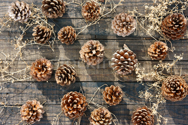 pine cone, Christmas, pinecone, xmas Stock photo © xuanhuongho