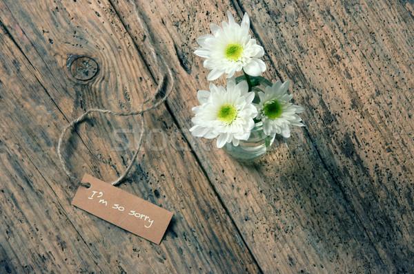 Siralmas papír absztrakt fából készült konzerv Valentin nap Stock fotó © xuanhuongho