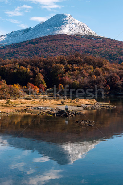 Autumn in Patagonia. Cordillera Darwin, Tierra del Fuego Stock photo © xura