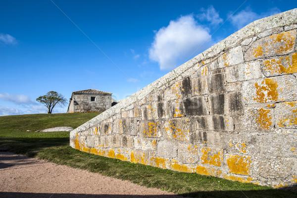 Kale Uruguay star yıl duvar Stok fotoğraf © xura