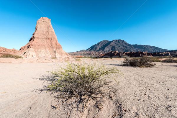 Arjantin gün batımı doğa manzara çöl güzellik Stok fotoğraf © xura