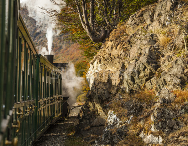 End of World Train (Tren fin del Mundo), Tierra del Fuego, Patag Stock photo © xura