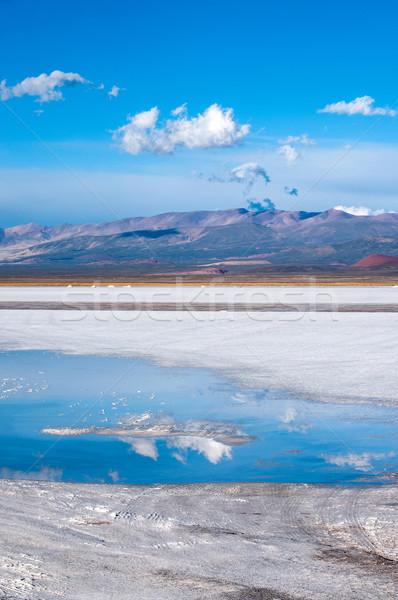 Argentina sal deserto mais paisagem azul Foto stock © xura