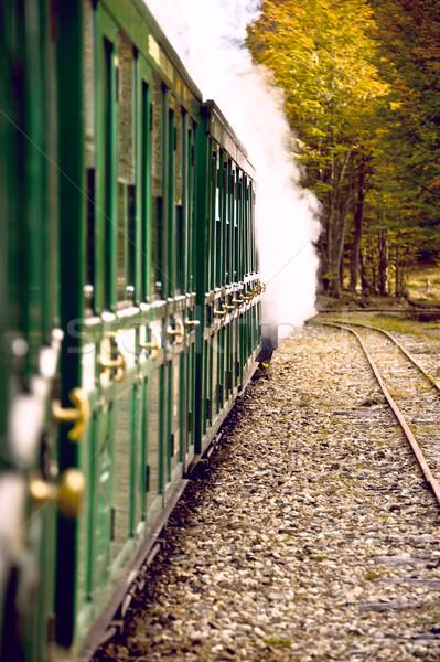 Son dünya tren yüzgeç orman manzara Stok fotoğraf © xura