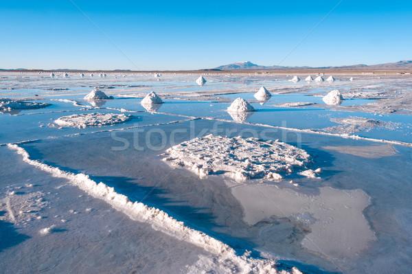 Tuz göl Bolivya gökyüzü su manzara Stok fotoğraf © xura