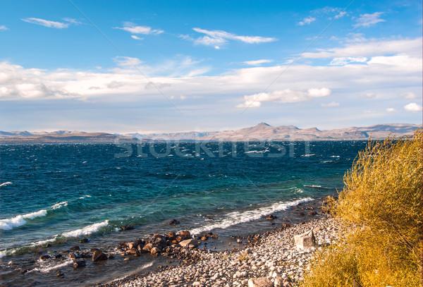 озеро Аргентина природы красоту горные зеленый Сток-фото © xura