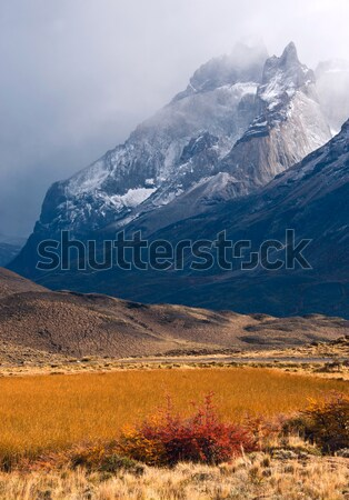 Autumn in Patagonia. Torres del Paine National Park Chile Stock photo © xura
