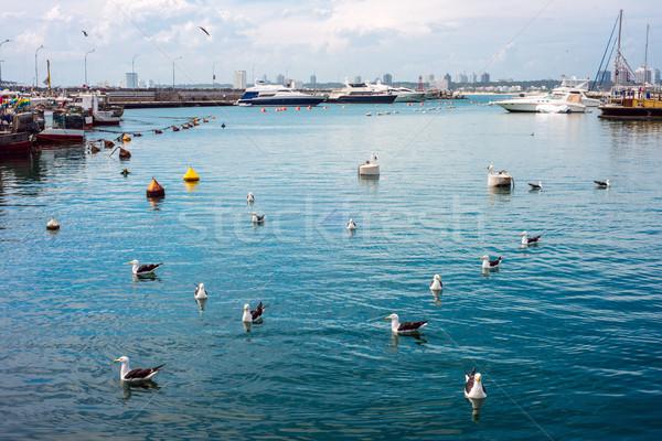 лодках Уругвай пляж морем океана путешествия Сток-фото © xura