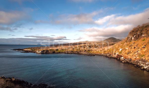 Ada ikon dalış su ışık Stok fotoğraf © xura