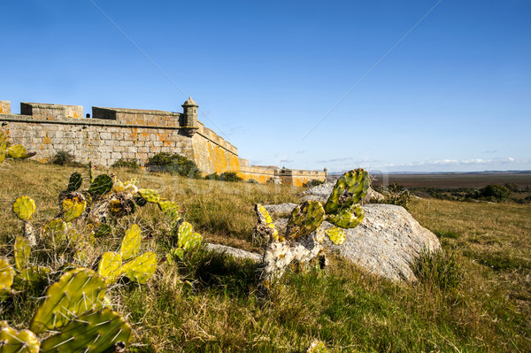 Fort Uruguay rock architettura museo Foto d'archivio © xura