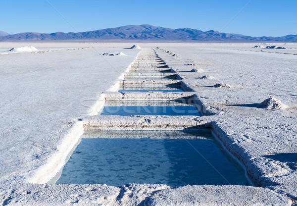 Foto stock: Argentina · sal · deserto · mais · paisagem · montanha