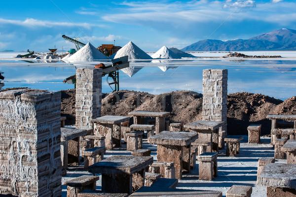 Argentina sal deserto mais paisagem neve Foto stock © xura