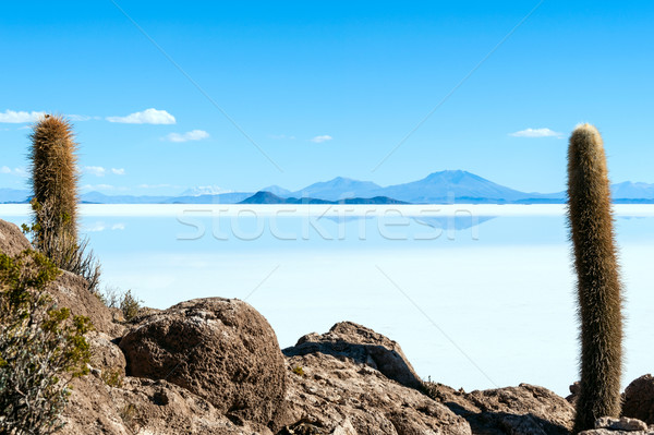 Sal lago Bolívia céu água paisagem Foto stock © xura