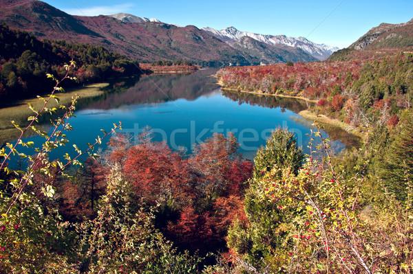 Sonbahar Arjantin renkler göl doğa manzara Stok fotoğraf © xura