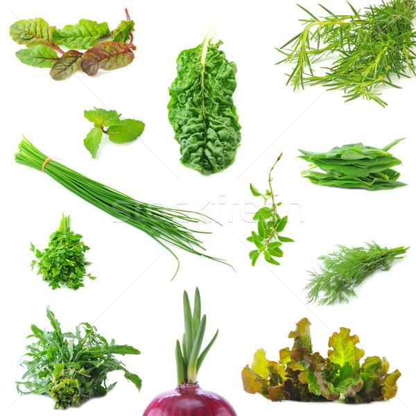 Mix organic salad leaves and salad onion springs Stock photo © xura