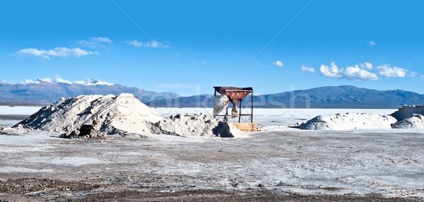 Arjantin tuz çöl daha fazla sanayi fabrika Stok fotoğraf © xura