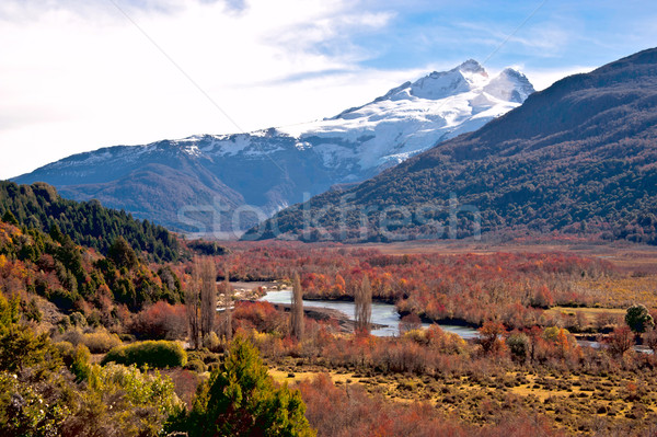 Tronador volcano, border between Argentina and Chile, Southern V Stock photo © xura