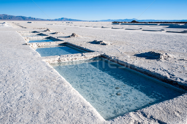 Argentina sal deserto mais natureza paisagem Foto stock © xura