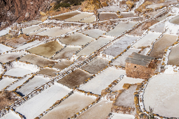 Salinas de Maras, the traditional inca salt field in Maras near  Stock photo © xura