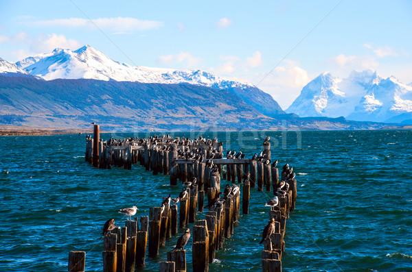 царя колония старые док Чили воды Сток-фото © xura