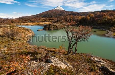 Outono bigle canal Argentina lado água Foto stock © xura