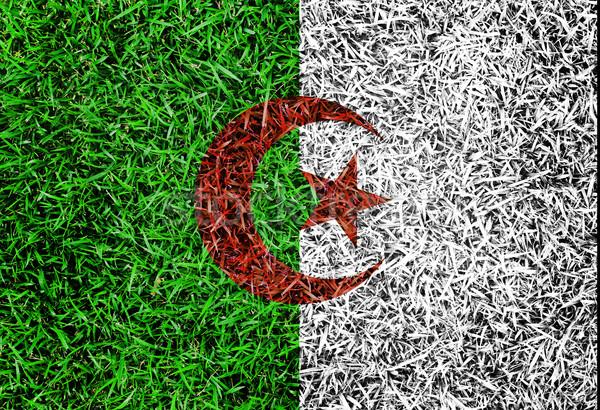 Algeria Flag color grass texture background Stock photo © yanukit