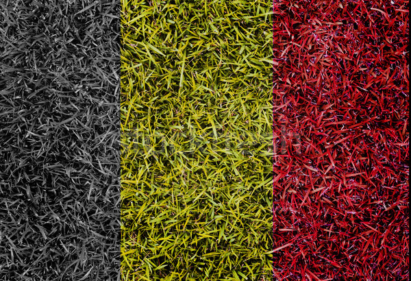 Belgium Flag color grass texture background Stock photo © yanukit