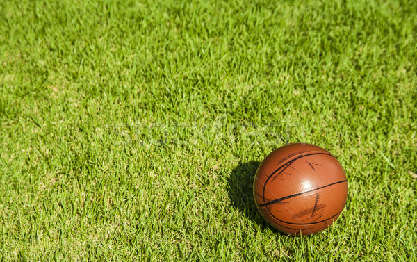 Stock photo: dirty small basketball on the grass