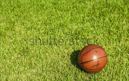 dirty small basketball on the grass Stock photo © yanukit