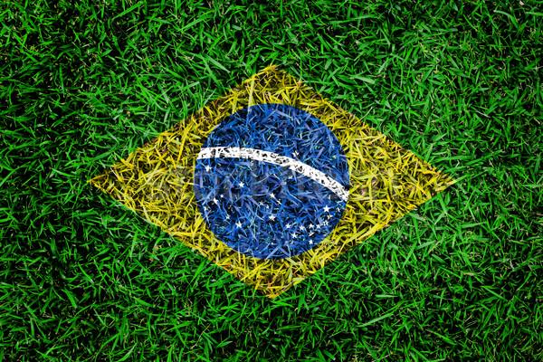 Бразилия флаг текстуры зеленая трава саду весны Сток-фото © yanukit