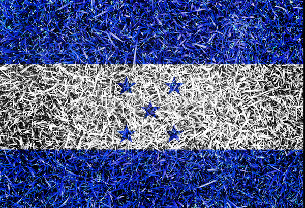 Honduras Flag color grass texture background Stock photo © yanukit