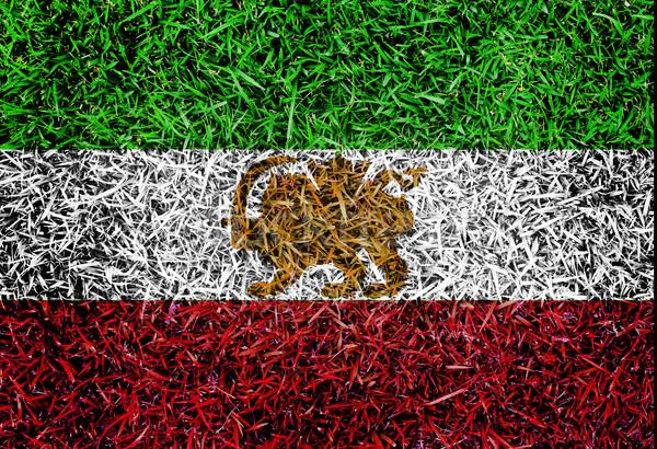 Irán zászló szín fű textúra tavasz Stock fotó © yanukit