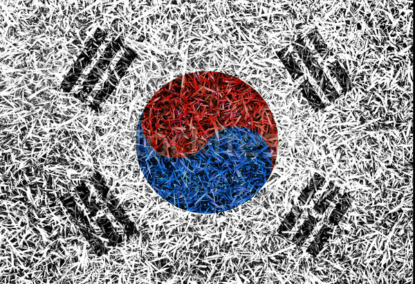 South Korea Flag color grass texture background Stock photo © yanukit