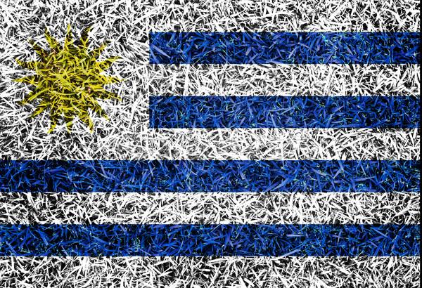 Uruguay zászló szín fű textúra tavasz Stock fotó © yanukit