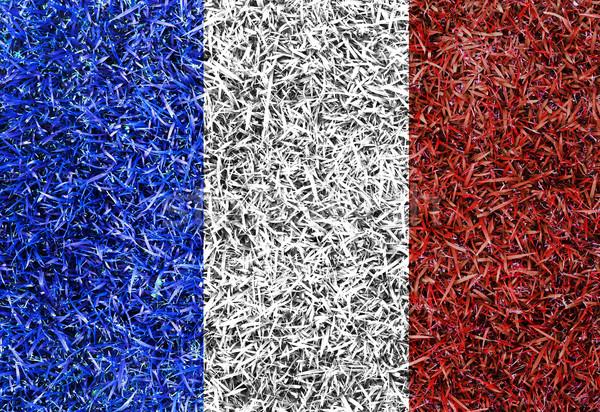 Франция флаг цвета трава текстуры весны Сток-фото © yanukit