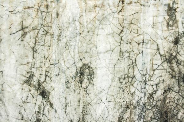 грязные цемент влажный стены текстуры строительство Сток-фото © yanukit