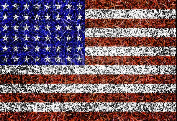 США флаг цвета трава текстуры весны Сток-фото © yanukit