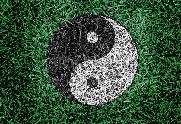 Yin yang symboliczny trawy tekstury równowagi życia Zdjęcia stock © yanukit